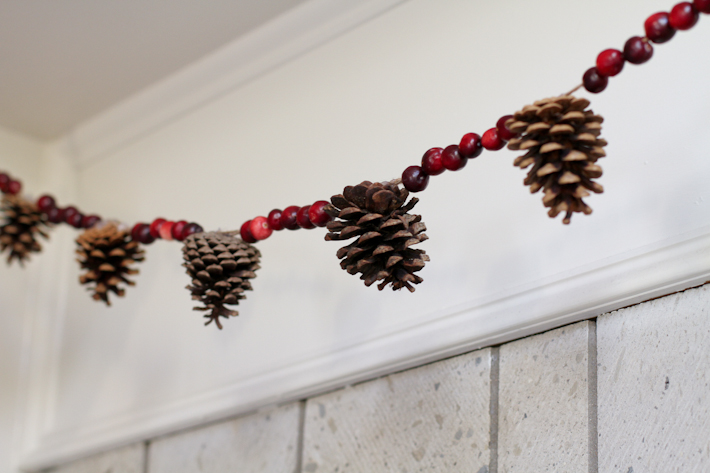 Cranberry and pine cone garland DIY || joyfully so