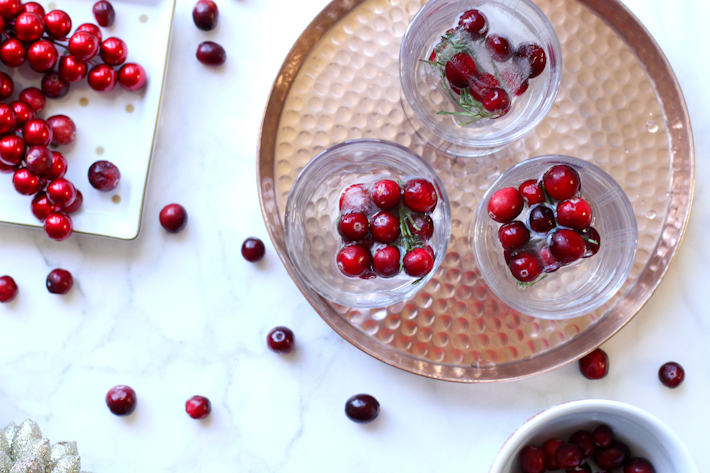 Easy Holiday Ice with rosemary and cranberries - DIY || joyfully so